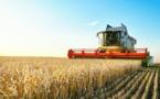 20% des agriculteurs n'ont pas dégagé de revenu en 2017
