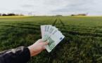 Finance durable : les encours ont bondi de 45% en un an