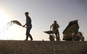 Travailleurs détachés : le Parlement européen adopte de nouvelles règles