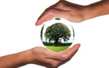 Des start-ups tournées vers un monde plus vert